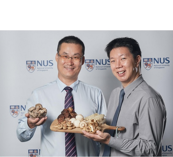 Le professeur adjoint Lei Feng (à gauche) et le chercheur Dr. Irwin Cheah (à droite sur visuel) de la NUS