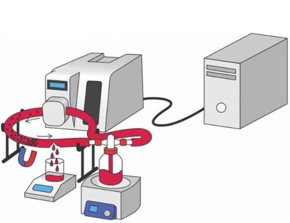 L'efficacité est testée sur des échantillons de plasma sanguin humain et ce modèle de vaisseau sanguin endommagé