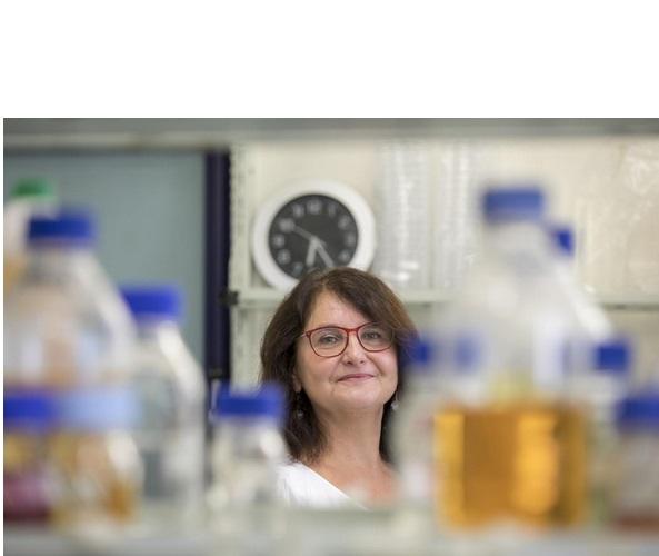 L'équipe de recherche de l'Université de technologie de Graz travaille déjà au développement et à la mise en œuvre de solutions biotechnologiques pour une diversité microbienne sur mesure, y compris pour l'hôpital avec ses contraintes rigoureuses d'asepsie.