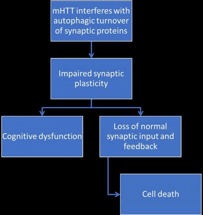 Visuel Journal of Huntington's Disease
