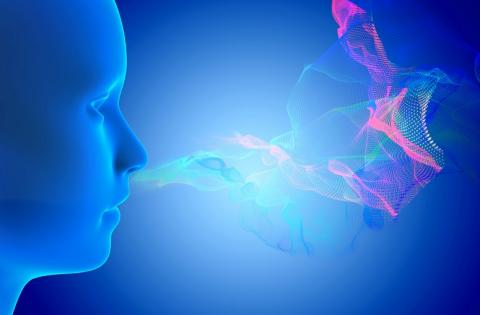 La perte d'odeurs, ou anosmie, touche environ 5% de la population générale.