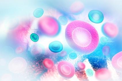Ces travaux apportent des preuves moléculaires d'un cycle de vie et d'une durée de vie uniques de ce « pool cellulaire à mémoire ».