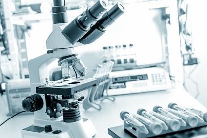 En visualisant à l'aide d'une microcaméra spéciale les tissus vivants et au niveau cellulaire, ces scientifiques font une découverte étonnante.