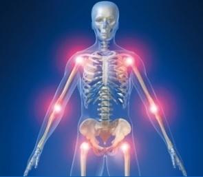 Les FoxO sont des protéines clés dans le risque d'arthrose au cours du vieillissement