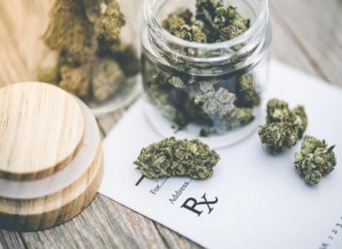 L'absence de lien clair entre le cannabis et les tentatives de suicide est la première conclusion de cette analyse