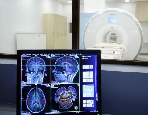 La taille du cerveau, c'est 2% de variabilité aux tests cognitifs