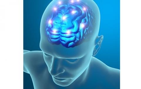 Coincé dans une erreur en boucle, c'est la description « du cerveau » de patients atteints de trouble obsessionnel compulsif (TOC) apportée par cette équipe de l'Université du Michigan.
