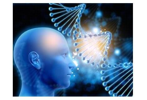 Il n'existe aujourd'hui aucun traitement pour la rétinite pigmentaire, une maladie oculaire génétique, qui touche environ 1 personne sur 4.000 dans le monde.
