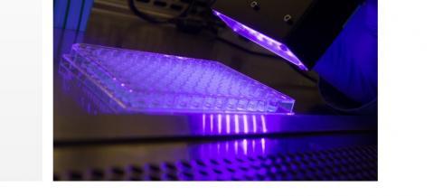 La thérapie photodynamique implique un composé photosensibilisateur qui peut être activé par la lumière visible pour tuer les cellules malades ou les bactéries.