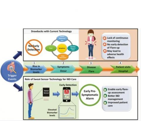 Le dispositif semblable à un bracelet détecte 2 biomarqueurs clés associés à la MICI, l'interleukine-1β et la protéine C-réactive (CRP) (Schéma Université du Texas à Dallas)