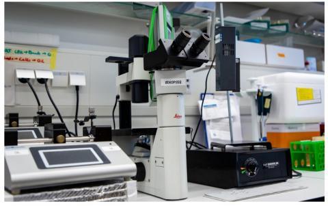Le séquençage d'ARN monocellulaire, une technique prometteuse pour circoncire d'autres infections virales