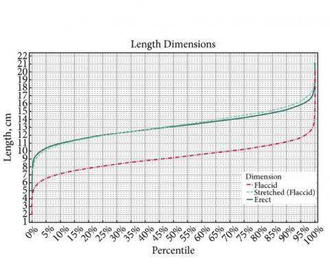 Cette méta-analyse (5) estime la taille moyenne d'un pénis en érection à 13,12 cm