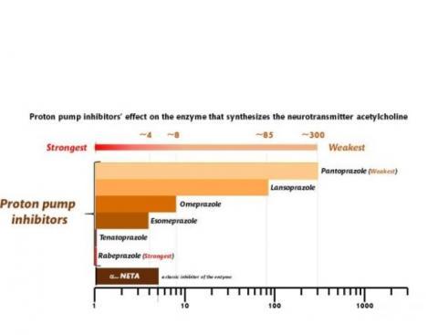 Et plus la liaison entre l'IPP et l'enzyme est forte, plus l'effet inhibiteur est élevé.