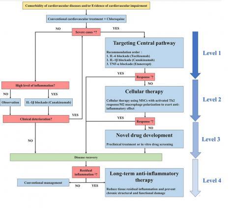 Une sélection de thérapies anti-inflammatoires cardiovasculaires spécifiques pour les patients COVID-19, en fonction de la gravité de la maladie