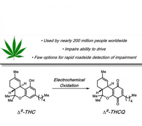 L'oxydation étant la perte d'un électron d'une molécule, les chercheurs ont retiré une molécule d'hydrogène du THC ce qui induit l'oxydation et ce qui entraîne des changements dans la couleur de la molécule qui peut alors être détectée par le test.
