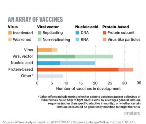 4 approches majeures de développement de vaccins anti-COVID-19 sont poursuivies (Schéma Nature)