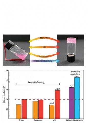 Cet hydrogel combine les avantages des 2 formes, solide et liquide, il peut être transformé de la forme solide à la forme liquide et peut revenir à la forme d'hydrogel solide en moins d'une minute.