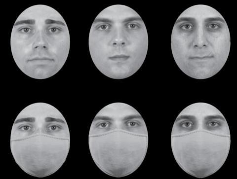 Chicago Face Database (Ma et al., 2015)