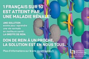 1 Français sur 10 est atteint par la maladie rénale (Visuel Agence de la biomédecine)