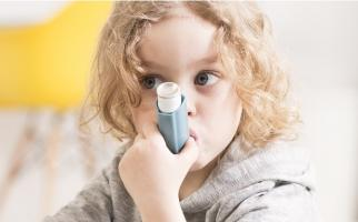 Les enfants qui souffrent d'asthme sont moins susceptibles de réagir aux stéroïdes inhalés s'ils sont en surpoids ou obèses et risquent des crises d'asthme plus fréquentes (Visuel Adobe Stock 113536716)