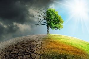 L'été deviendra rapidement une saison mortelle pour la vie sur Terre