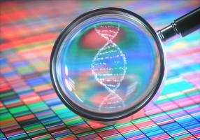 Les altérations de certains gènes provoquent le développement d'un cancer uniquement dans des organes spécifiques, pourquoi ? (Visuel Adobe Stock 188814004)