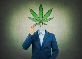Les cannabinoïdes exercent une influence forte à la fois sur le fonctionnement du cerveau et sur le comportement et l'activité (Adobe Stock 233587910).