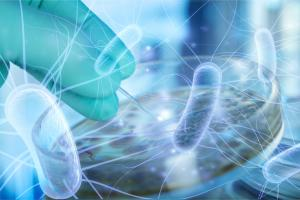 Les pansements intelligents sont « connectés » pour transmettre des données sur la plaie ou activables de l'extérieur pour délivrer si besoin des facteurs de cicatrisation ou des antibactériens.