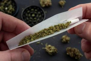 L'étude montre l'absence d'effet particulier de ce type de cannabis, concentré en THC sur la plupart des capacités cognitives des utilisateurs, notamment la prise de décision mais identifie quelques effets sur la mémoire (Visuel Adobe Stock 282538116).