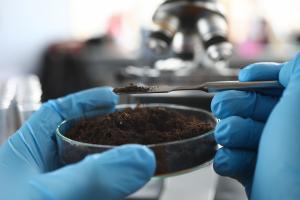 Utiliser les silicates du sol pour stopper les saignements des plaies ? (Visuel Adobe Stock 327860385)