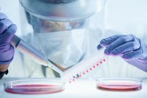 Cette étude priorise les gènes actifs pour ou contre la maladie (Visuel Adobe Stock 331690395)