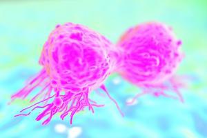 La stratégie consiste à affamer la tumeur en lui coupant les vivres.