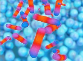 Cette nouvelle approche de traitement avec un nouveau véhicule d'administration de médicaments basé sur la toxine modifiée pourrait changer la donne (Visuel Adobe Stock 74253023)