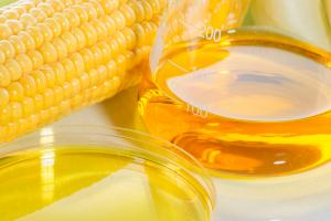 Cette accélération de la production de graisse déclenchée par le fructose ou le saccharose se poursuit pendant plus de 12 heures après la fin de la consommation de sucre  (Visuel Adobe Stock 87387765)