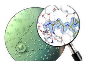 Il s'agit ici de bloquer une enzyme clé des plaques amyloïdes : « cristaux de protéines de l'enzyme humaine glutaminyl cyclase et structure atomique du nouvel inhibiteur » (Visuel Lisa-Marie Funk)