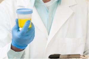 Environ 25% des femmes qui souffrent d'une infection urinaire connaîtront une récidive de l'infection dans les 6 mois suivant l'infection initiale.