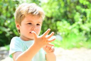 De petits enfants âgés de 14 et 18 mois sont capables de faire la différence entre « un » et plusieurs