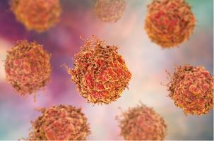 Le blocage de cette protéine spécifique, CDK7, pourrait constituer un nouveau traitement pour une forme mortelle de cancer de la prostate, résistante aux traitements standards