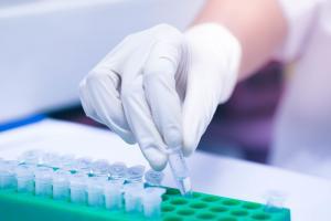La variabilité génétique du système immunitaire humain peut affecter la sensibilité d'une personne à l'infection par le coronavirus SRAS-CoV-2