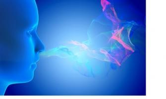 Oublier les odeurs, c'est un peu comme oublier « quand » et « où » on les a rencontrées.