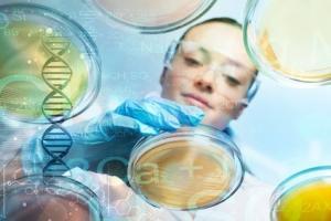 Il  serait possible, sans chirurgie, et en ciblant les cellules souches quiescentes, résidant dans le cerveau des patients de générer de nouvelles cellules saines et de réparer ainsi la lésion cérébrale.