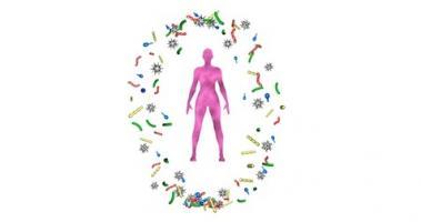 Cette découverte de communautés spécifiques au cancer dans le microbiome du sein ouvre une nouvelle perspective dans la lutte contre le cancer du sein