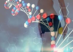 Le succès d'un régime dépend aussi de l'ADN de chacun