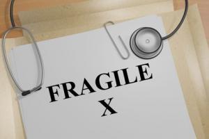 Les chercheurs rétablissent une partie des fonctions de la protéine FMRP impliquée X Fragile (Visuel Fotolia_159544725_XS X)