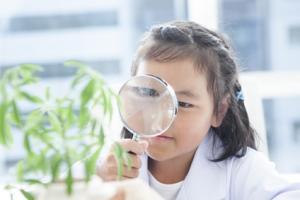 Si les approches actuelles sont plutôt concentrées sur la mise en place d'un contrôle et d'une auto-régulation précoces et le développement de la curiosité est une option alternative de développement également prometteuse.