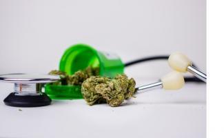 Des données favorables ainsi à l'utilisation du cannabis médical qui contribue au soulagement des symptômes de MPCO sans affecter l'essoufflement