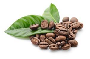Des extraits de l'enveloppe des grains de café pourraient constituer un supplément extrêmement bénéfique, un brûleur de graisse à la fois naturel et efficace