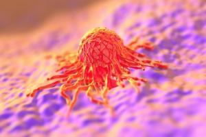 Dans l'agent, le peptide cible spécifiquement une protéine associée à l'invasion tumorale, la métastase et la résistance aux médicaments