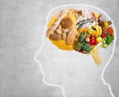 Avec un régime riche, ce n'est pas seulement la dépendance alimentaire qui s'installe, mais tout un ensemble de processus cognitifs qui sont dégradés.