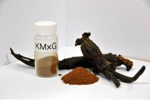 Ginseng rouge KMxG fabriqué par traitement micro-ondes (Visuel Korea Institute of Science and Technology- KIST)